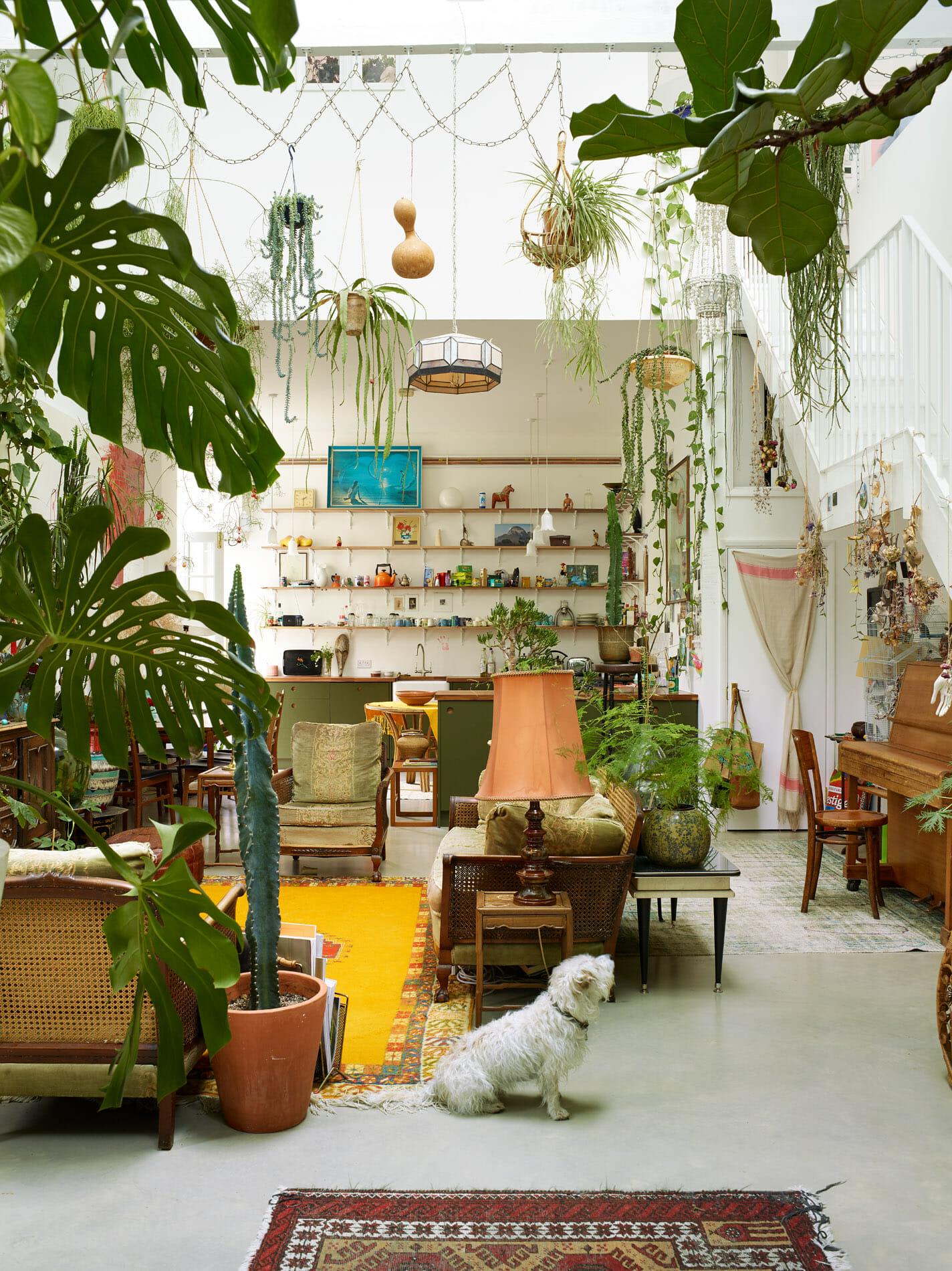 rachael-smith-interiors-14122019-099-1